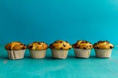 Many tasty homemade vanilla muffins with chocolate chunks on bri Royalty Free Stock Image