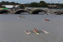 Many Teams (Eyre Rowing Bottom) race in the Head of Charles Regatta Men's Championship Eights,. BOSTON - OCTOBER 19, 2014: Many Teams (Eyre Rowing Bottom) race Stock Image