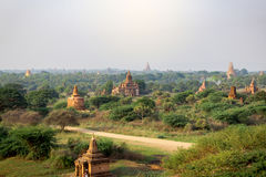 Many of temples of Bagan in Myanmar Royalty Free Stock Photo