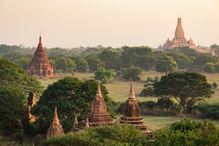Many of temples of Bagan in Myanmar Royalty Free Stock Images