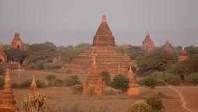 Many temples in the Bagan stock video footage