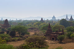 Many temples in Bagan on sunny day Royalty Free Stock Images
