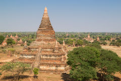 Many temples in Bagan on sunny day Stock Photography
