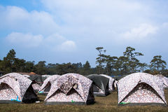 Many tents at a campsite Royalty Free Stock Photography