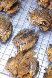 Many thai fish fried Stock Photography