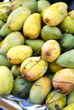 Many thai mango Stock Photography