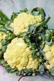 Many thai yellow cabbage Stock Photos