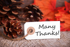 Many Thanks on a Fall Label Stock Photos