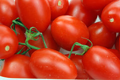Many tomatoes Stock Images