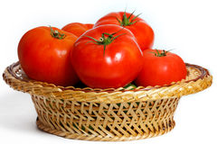 Many tomatoes in a basket Stock Image