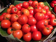 Many tomatoes in vegetable market Royalty Free Stock Images