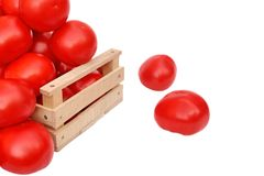Many tomatoes in wooden box Stock Photo