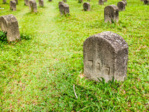 Many tombs on the grass. A tombstone on a verdant lawn Stock Image