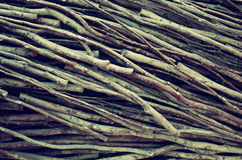 Many tree branches creating natural pattern. Retro filtered Royalty Free Stock Image