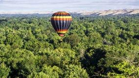Many trees in Boise Idaho beneath a hot air balloon Royalty Free Stock Photos