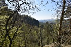 Many trees at the green hiking trail in spring at Elbe Sandstone Mountains in beautiful Saxon Switzerland near Bohemian Switzerlan. Many trees and rocks at the royalty free stock images
