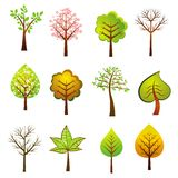 Many trees, vector. Many vector trees on the white background, vector illustration Stock Photography