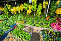 Many tropical fruits in outdoor market Royalty Free Stock Photo