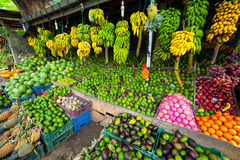 Many tropical fruits in outdoor market stock images
