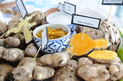 Many type of Thai herbs for spa. Royalty Free Stock Images