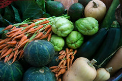 Many types of vegetables Royalty Free Stock Image