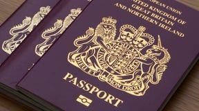Many Uk Passports. On wooden desk royalty free stock photo