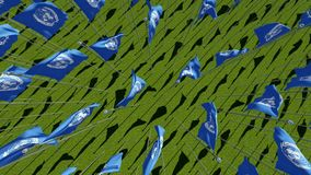 Many United Nations flags in green field. View from above. Three dimensional rendering 3D animation stock video