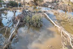 Flood debris. Many uprooted trees and pile of debris on dangerous part of landslip river/stream section after flooding by heavy rains of Harvey hurricane storm Stock Images