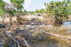 Flood debris. Many uprooted trees and pile of debris on dangerous part of landslip river/stream section after flooding by heavy rains of Harvey hurricane storm Stock Photography