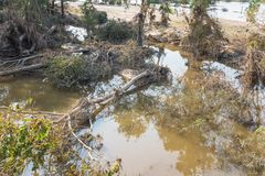 Flood debris. Many uprooted trees and pile of debris on dangerous part of landslip river/stream section after flooding by heavy rains of Harvey hurricane storm Royalty Free Stock Images