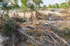 Flood debris. Many uprooted trees and pile of debris on dangerous part of landslip river/stream section after flooding by heavy rains of Harvey hurricane storm Royalty Free Stock Photo