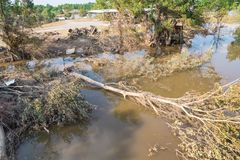 Flood debris. Many uprooted trees and pile of debris on dangerous part of landslip river/stream section after flooding by heavy rains of Harvey hurricane storm Stock Image