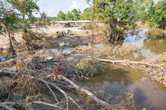 Flood debris. Many uprooted trees and pile of debris on dangerous part of landslip river/stream section after flooding by heavy rains of Harvey hurricane storm Stock Photo