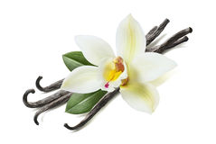 Many vanilla sticks, flower and leaves royalty free stock photo