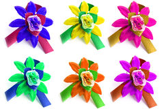 Many varicoloured flowers Stock Images