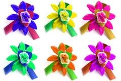 Many varicoloured flowers Stock Images