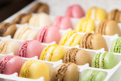 Many variegated sweet macaroons in box Stock Photography