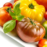 Many varieties of colorful tomatos Royalty Free Stock Image