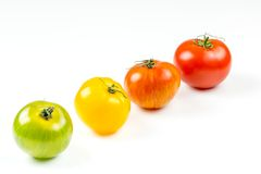 Many varieties of colorful tomatos Stock Photo