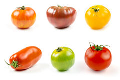 Many varieties of colorful tomatos Stock Images