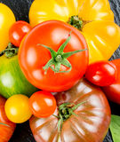 Many varieties of colorful tomatos Royalty Free Stock Photos