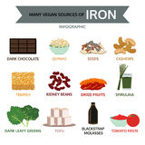Many vegan sources of iron, food info graphic, vector Royalty Free Stock Photography