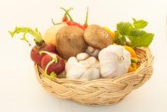 Many Vegetable on awhite background. Many Vegetable on a white background stock photography