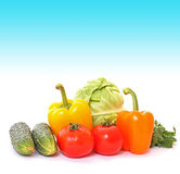 Many vegetables royalty free stock image