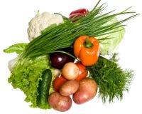 Many vegetables Royalty Free Stock Photo