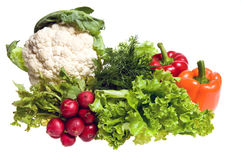 Many vegetables. Cauliflower, lettuce, pepper and other vegetables studio isolated Stock Photography