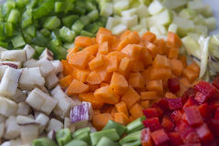 Many vegetables cut on dices on a plate Stock Photography