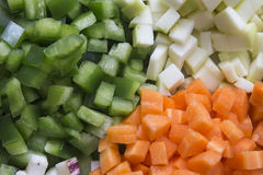 Many vegetables cut on dices on a plate Royalty Free Stock Photography