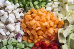 Many vegetables cut on dices on a plate Royalty Free Stock Images