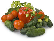 Many vegetables on the plate Stock Image